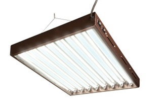 T5 Designer 8 Tube Light System with Bulbs, 4ft